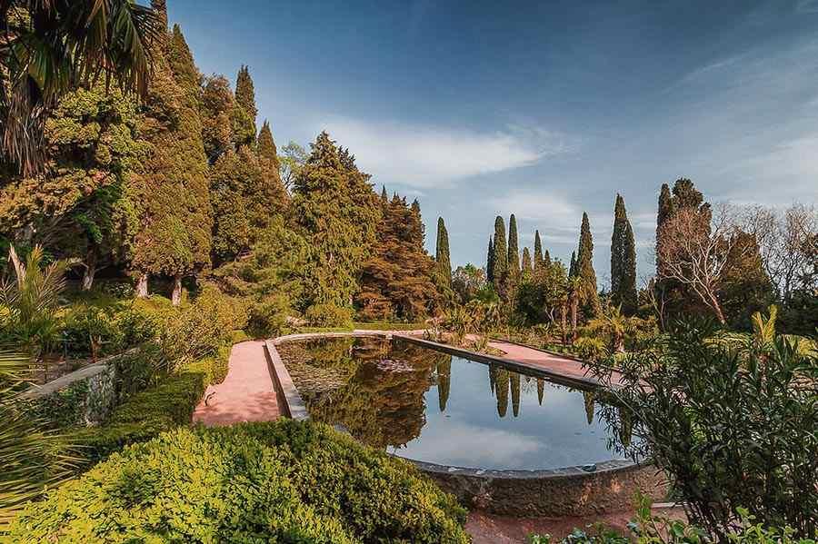 вариант никитинский ботанический сад в ялте фото долгих
